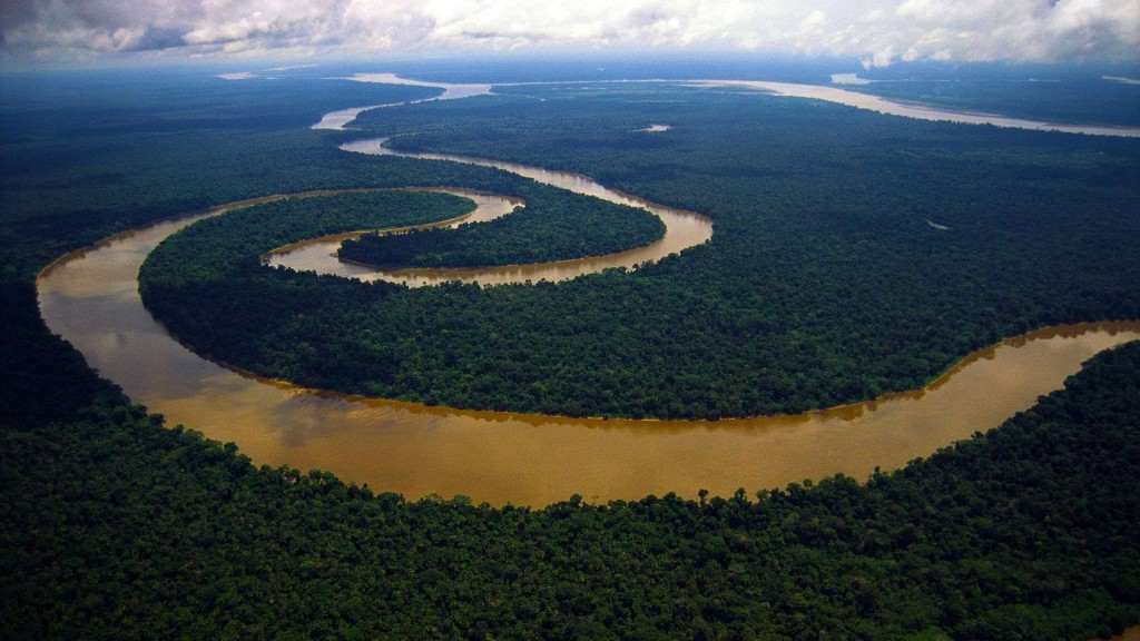 Amazon-River-Rain-Forest-Wallpaper