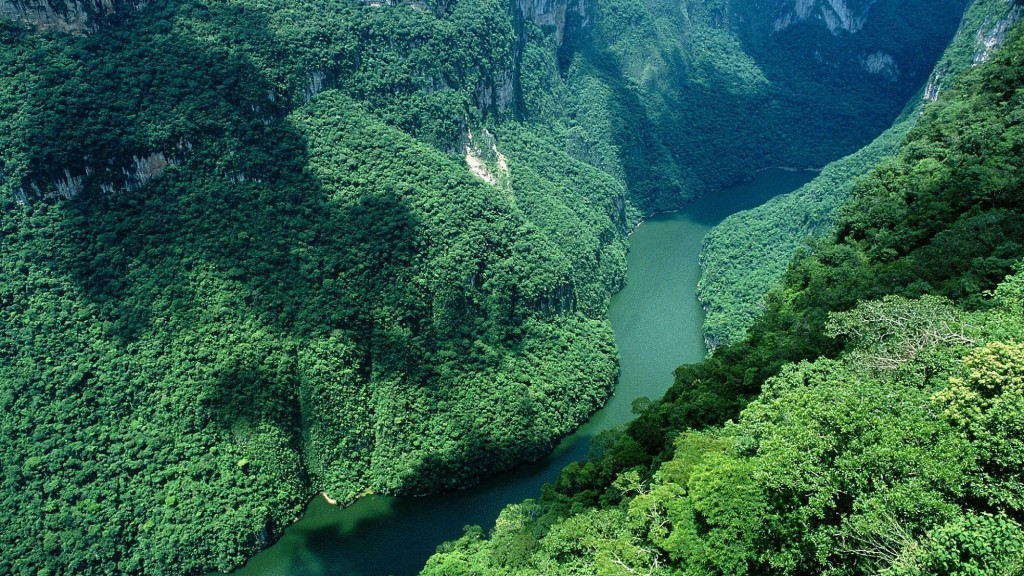 river_rocks_trees_bends_amazon_30265_3840x2160