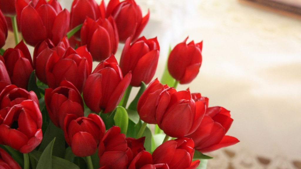tulips_flowers_bouquet_red_beautifully_22495_3840x2160