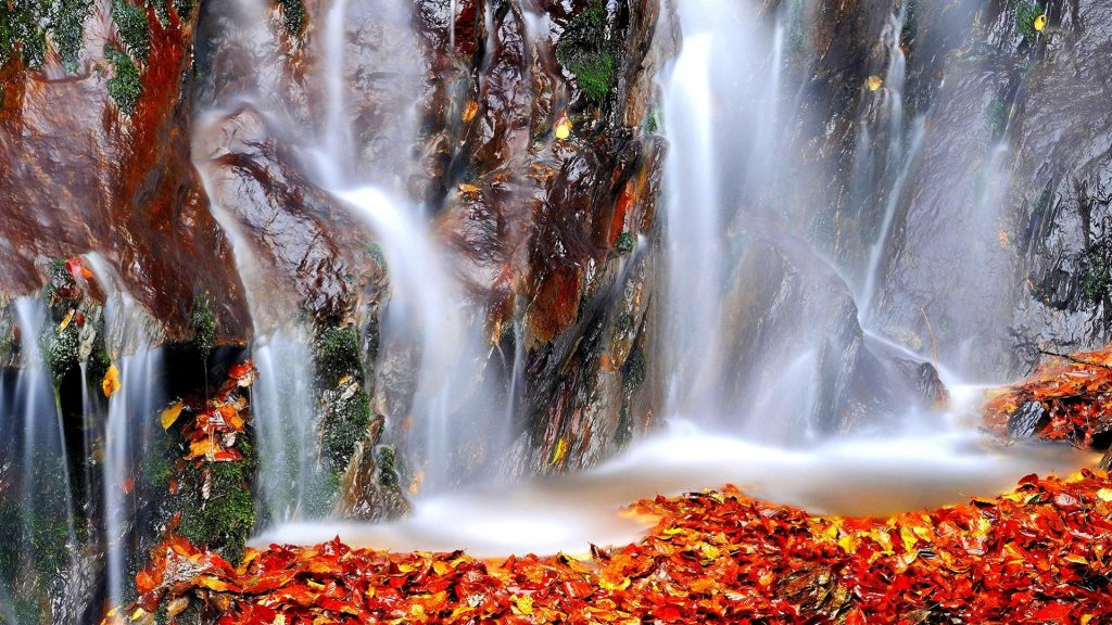 Otoño-Wallpapers-Hd-fotosdelanaturaleza.es (15)