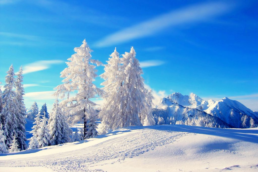 wallpapers-hd-nieve-fotosdelanaturaleza.es (4)