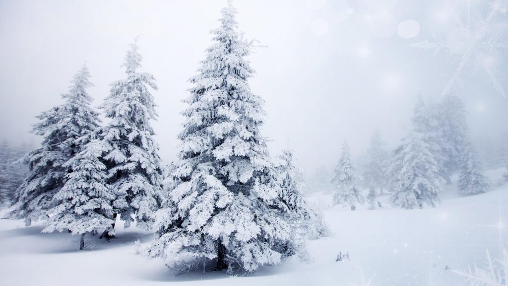 wallpapers-hd-nieve-fotosdelanaturaleza.es (8)